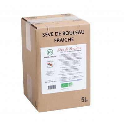 SEVE DE BOULEAU FRAICHE
